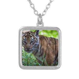 Hi-Res Sumatran Tiger Cub Silver Plated Necklace