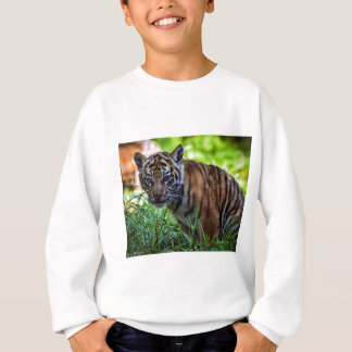 Hi-Res Sumatran Tiger Cub Sweatshirt
