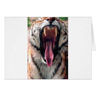 Hi-Res Tiger Bearing Jaws Card