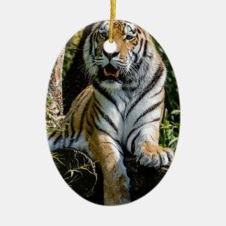 Hi-Res Tiger in Muenster Ceramic Ornament