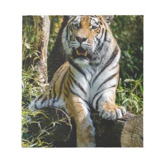 Hi-Res Tiger in Muenster Notepad
