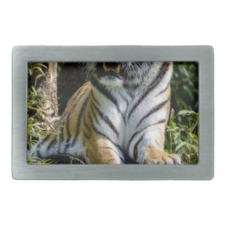 Hi-Res Tiger in Muenster Rectangular Belt Buckle