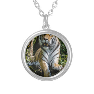Hi-Res Tiger in Muenster Silver Plated Necklace