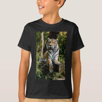 Hi-Res Tiger in Muenster T-Shirt