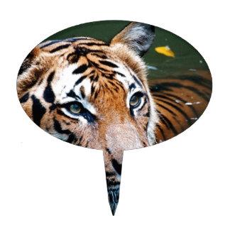 Hi-Res Tiger in Water Cake Pick