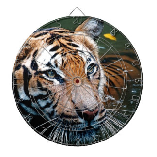 Hi-Res Tiger in Water Dartboard