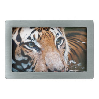 Hi-Res Tiger in Water Rectangular Belt Buckles