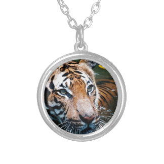 Hi-Res Tiger in Water Silver Plated Necklace