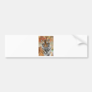 Hi-Res Tigres in Contemplation Bumper Sticker