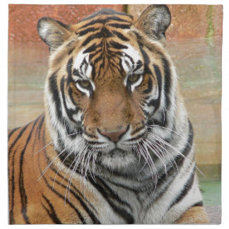 Hi-Res Tigres in Contemplation Napkin