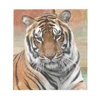 Hi-Res Tigres in Contemplation Notepad