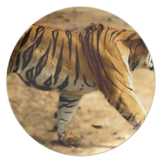 Hi-Res Tigres Stalking Dinner Plates