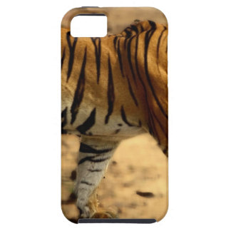 Hi-Res Tigres Stalking iPhone 5 Covers