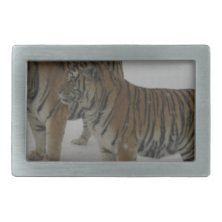 Hi-Res Two Siberian Tigers Belt Buckles