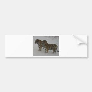 Hi-Res Two Siberian Tigers Bumper Sticker