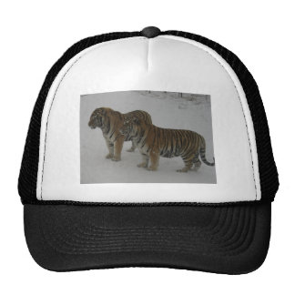 Hi-Res Two Siberian Tigers Cap