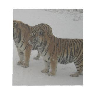 Hi-Res Two Siberian Tigers Notepad