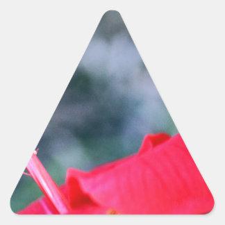 Hibiscus 4 triangle sticker
