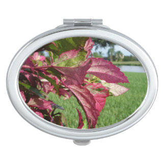 """Hibiscus """"Fire and Ice"""" Plant Mirrors For Makeup"""
