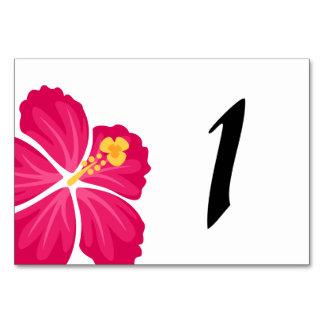 Hibiscus Floower Illustrations Card