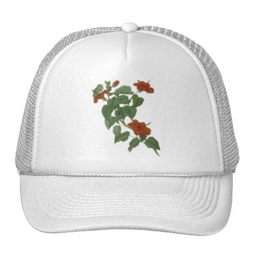 Hibiscus Flower Botanical Drawing Trucker Hats