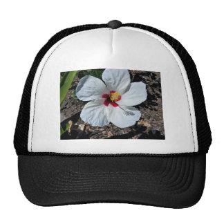 Hibiscus Flower Cap