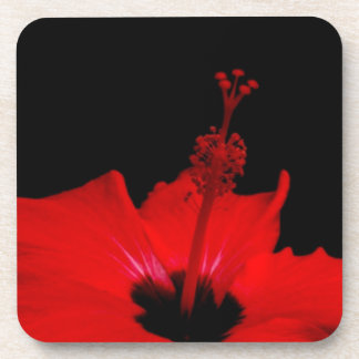 Hibiscus flower Cork Coaster