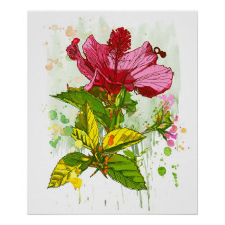Hibiscus flower - watercolor paint 2 poster
