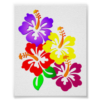 HIBISCUS FLOWERS COLORFUL CORNER VECTOR GRAPHICS L POSTER