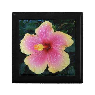 Hibiscus Hawaiian Flower Gift Box