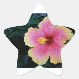 Hibiscus Hawaiian Flower Star Sticker