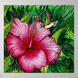 Hibiscus Hummingbird Print