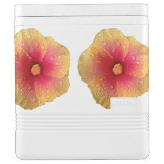 Hibiscus Igloo Cooler