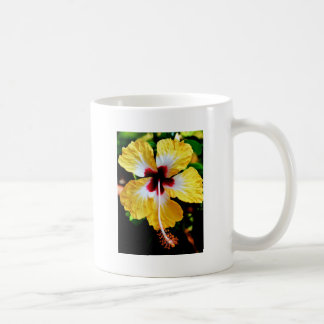 Hibiscus Coffee Mugs