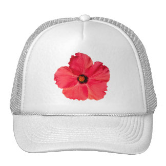 Hibiscus - Personalized Tropical Hot Pink Flower Cap