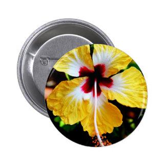 Hibiscus Pinback Button