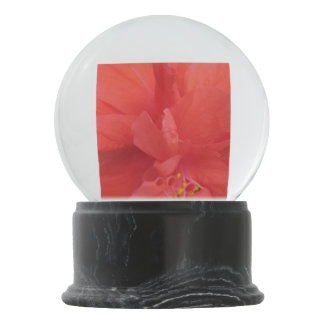 Hibiscus Plant Red Floral Snow Globes