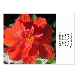 Hibiscus Red Flowering Plant Business Cards