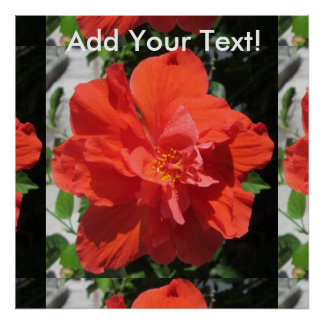 Hibiscus Red Flowering Plant Poster