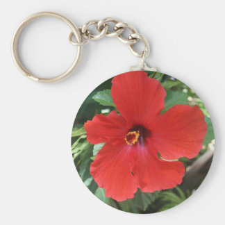 hibiscus red key chain