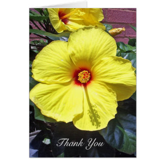 Hibiscus Thank You Card