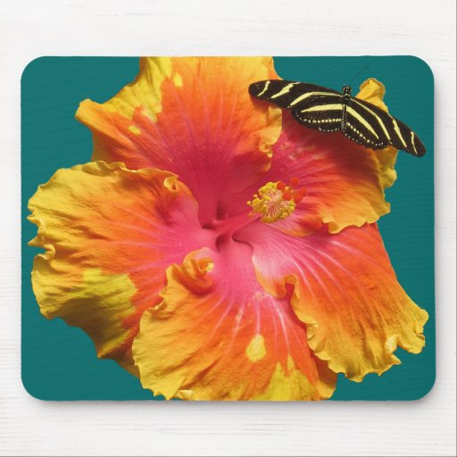Hibiscus with Zebra Longwing Butterfly Mouse Pads