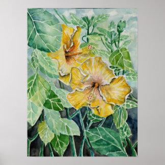 Hibiscus yellow flowers art poster print