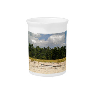 Hidden beach drink pitcher