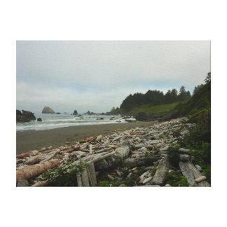 Hidden Beach I at Redwood National Park Canvas Print