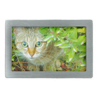 Hidden Domestic Cat with Alert Expression Belt Buckles