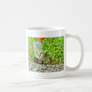 Hidden Domestic Cat with Alert Expression Coffee Mug
