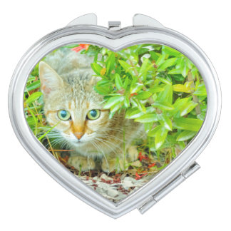 Hidden Domestic Cat with Alert Expression Compact Mirrors