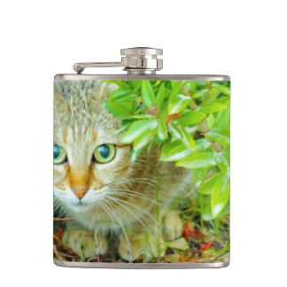 Hidden Domestic Cat with Alert Expression Hip Flask