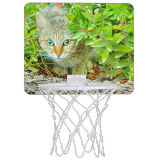 Hidden Domestic Cat with Alert Expression Mini Basketball Hoop